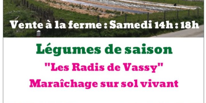 Les Radis De Vassy